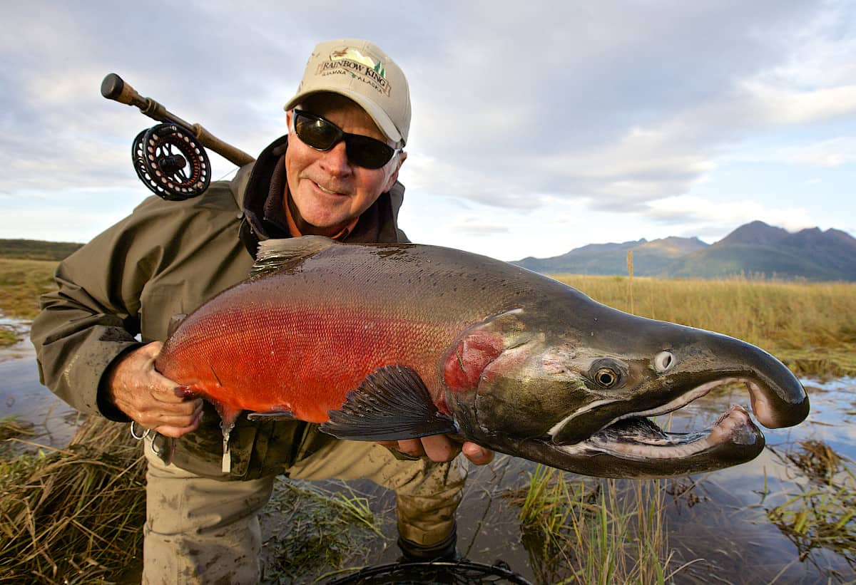 Salmon Fishing at Rainbow King Lodge