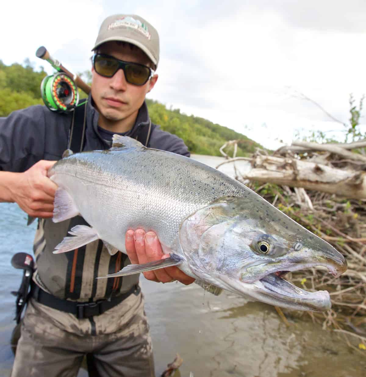 Silver Salmon fishing in ALaska